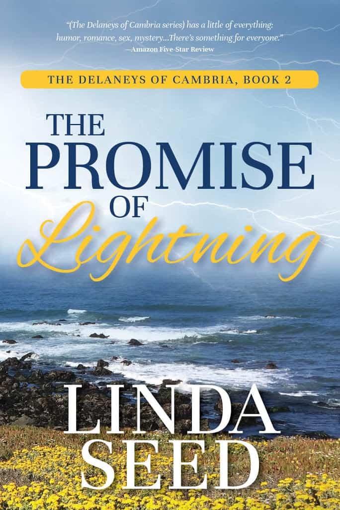 Sneak peek: The Promise of Lightning