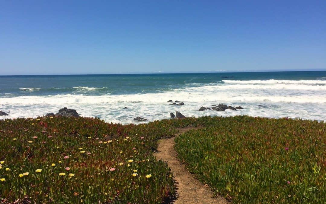Living the Central Coast Dream